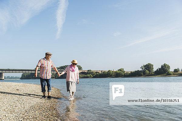 Deutschland  Ludwigshafen  glückliches Seniorenpaar  das Hand in Hand am Flussufer spazieren geht.