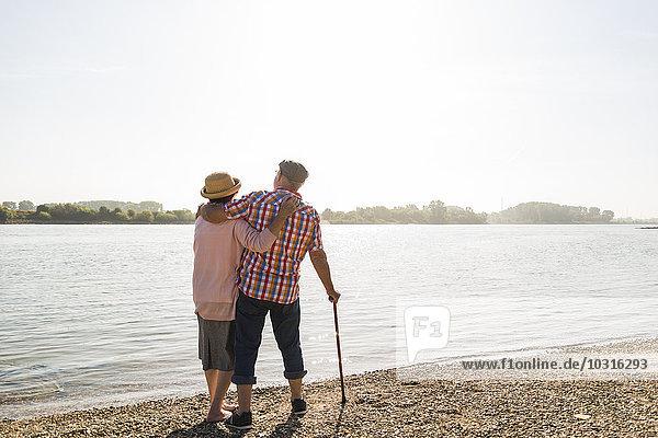Deutschland  Ludwigshafen  Rückansicht des Seniorenpaares mit Arm in Arm am Flussufer