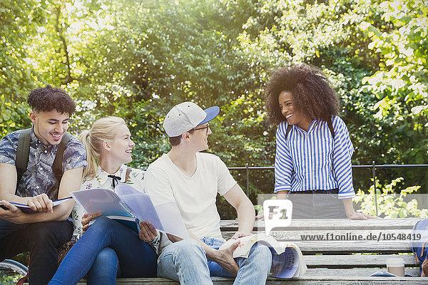 Studenten  die auf der Parkbank studieren.