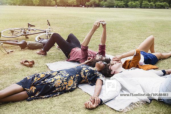 Freunde entspannen sich und nehmen Selfie im Kreis auf Decke in Park