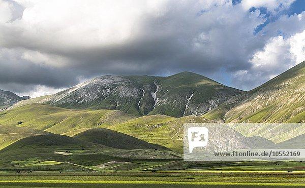 Hochebene Piana di Castelluccio di Norcia  Nationalpark Monti Sibillini  Umbrien  Italien  Europa
