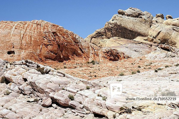 Farbige Sandsteinformationen  Valley of Fire State Park  Nevada  USA  Nordamerika
