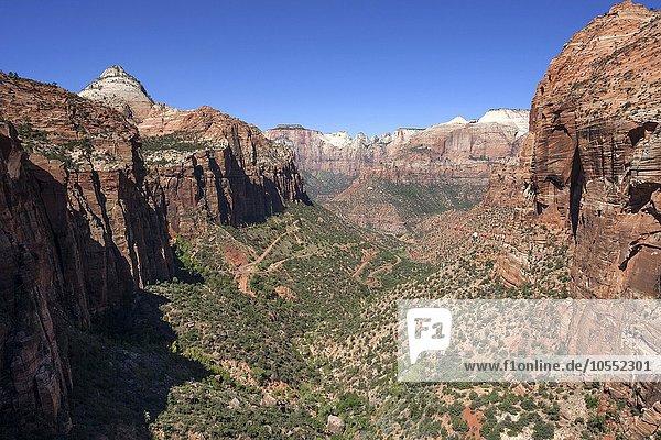 Ausblick vom Canyon Overlook in den Zion Canyon  hinten links Bridge Mountain  Zion Nationalpark  Utah  USA  Nordamerika
