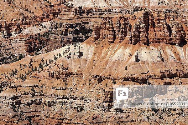 Ausblick auf bizarre Sandsteinerosionen im Amphitheater  Cedar Breaks National Monument  Utah  USA  Nordamerika