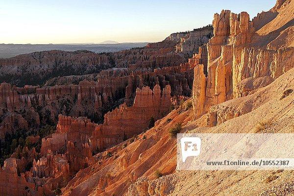 Ausblick in den Bryce-Canyon auf farbige Gesteinsformationen  Hoodoos  Morgenlicht  Bryce Canyon Nationalpark  Utah  USA  Nordamerika