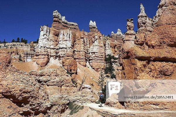 Farbige Gesteinsformationen  Hoodoos  Wanderin auf dem Queens Garden Trail  Bryce-Canyon-Nationalpark  Utah  USA  Nordamerika