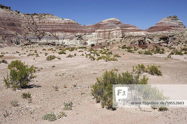Farbige Gesteinsformationen am Utah Highway 24  bei Hanksville  Utah  USA  Nordamerika