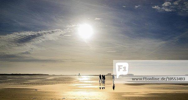 Spaziergänger am Strand bei untergehender Sonne  Sankt Peter-Ording  Schleswig Holstein  Deutschland  Europa