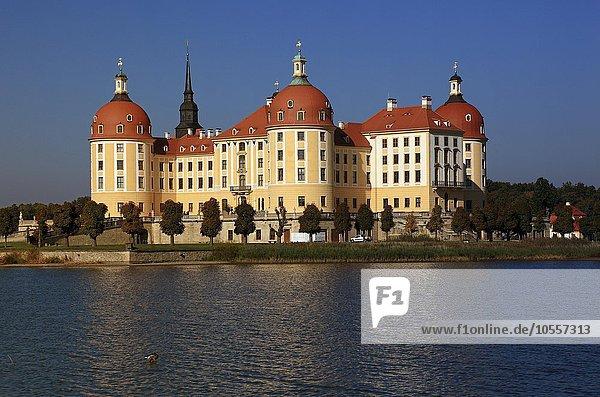 Schloss Moritzburg  Sachsen  Deutschland  Europa