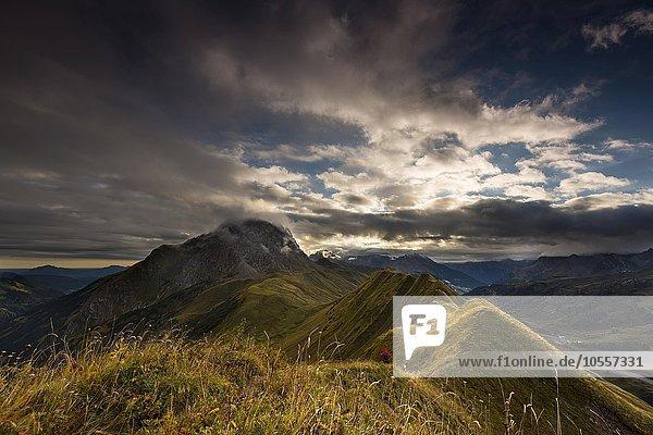 Bergsteiger auf grasigem Gipfelgrat  Allgäuer Alpen  Warth  Vorarlberg  Österreich  Europa