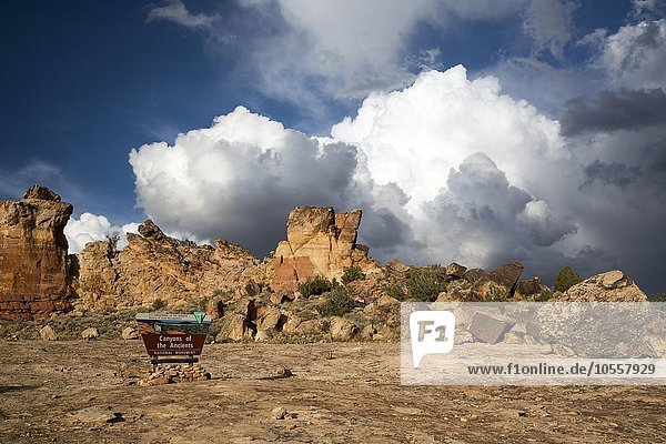 Canyons of the Ancients National Monument  Colorado  United States  North America