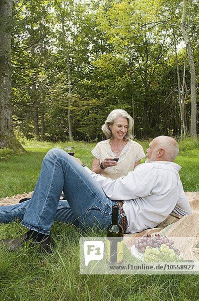 Picknick Wein trinken alt