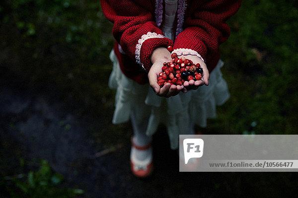 Caucasian girl gathering berries