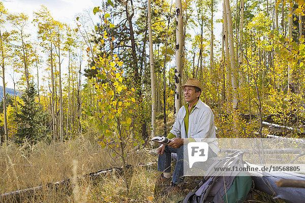 sitzend Mann Wald Herbst