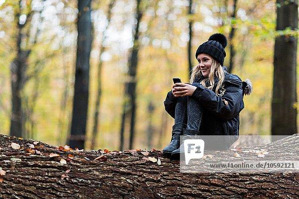 Mädchen mit Smartphone auf Baumstamm im Herbstwald