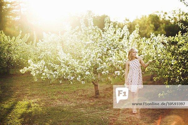 Durchgehende Vorderansicht einer jungen Frau in ärmellosem Kleid  die im Obstgarten steht und lächelnd wegsieht.