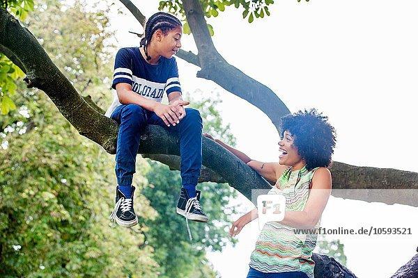 Reife Frau beobachtet den Sohn  der auf einem Parkbaumzweig sitzt.