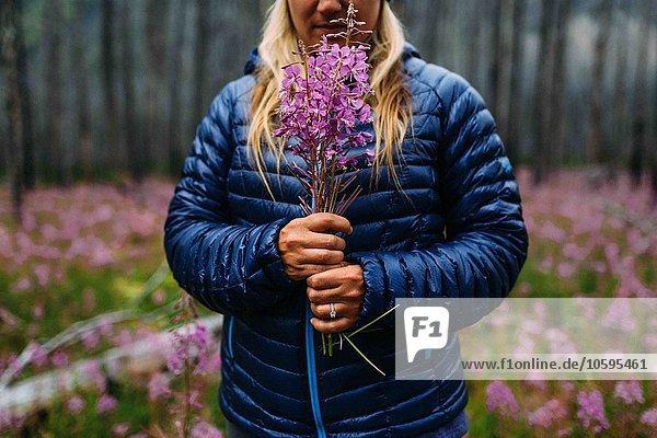 Ausschnitt einer erwachsenen Frau im gepolsterten Mantel mit Wildblumen  Moränensee  Banff National Park  Alberta Canada