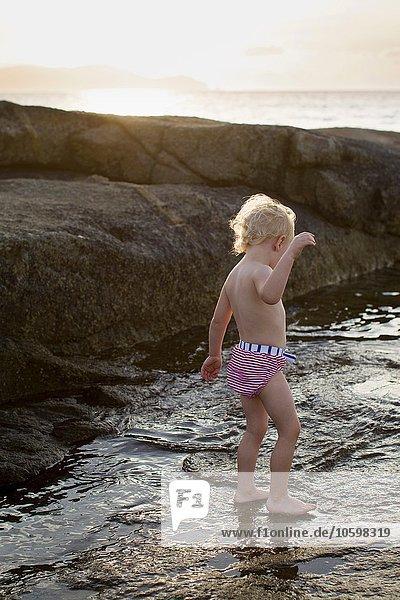 Female toddler paddling in sea  Calvi  Corsica  France