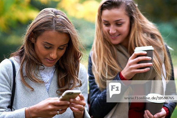 Two young female friends reading smartphone texts in park