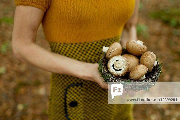 Ausschnitt einer reifen Frau  die ein mit Pilzen gefülltes Nest hält.