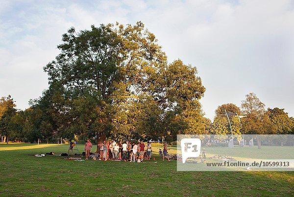 Fernsicht auf erwachsene Menschenmenge unter einem Baum bei Sonnenuntergang im Park