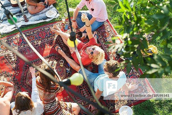 Overhead-Ansicht einer Gruppe von Freunden  die sich auf einem Teppich bei der Sunset-Park-Party entspannen.