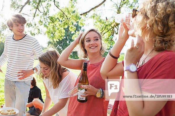 Erwachsene Freunde trinken Wein auf der Sunset Park Party