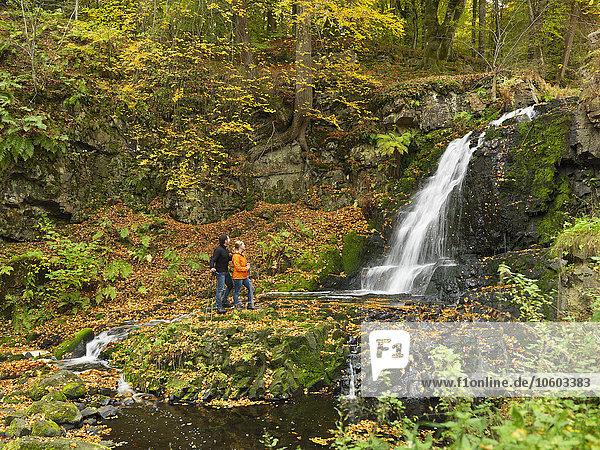 sehen Wald Wasserfall