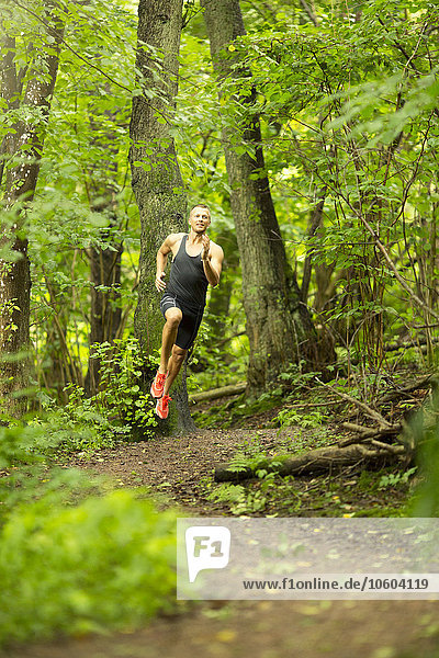 Mann rennen Wald