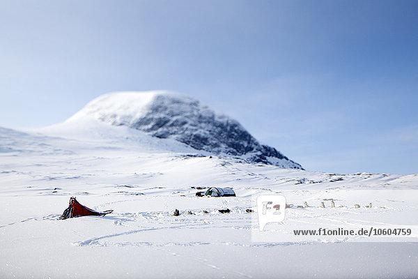 Berg Winter Hund Zelt