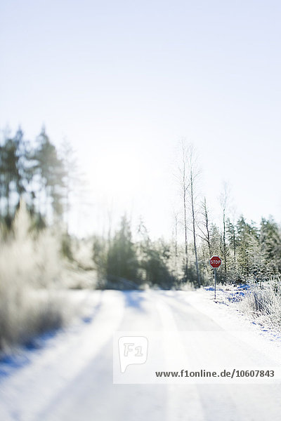 Winter road with a stop sign