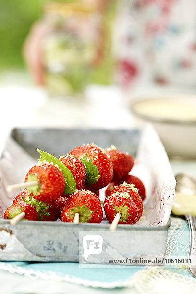 Erdbeere Bratspieß Spieß