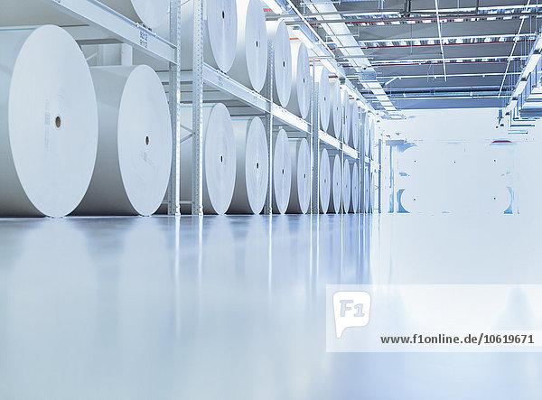Große Papierrollen in der Druckerei