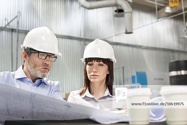 Ingenieure  die in der Fabrik Blaupausen betrachten