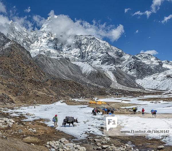 Nepal  Himalaya  Khumbu  Everest Region  Ama Dablam Basislager