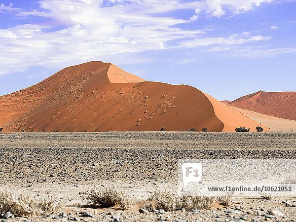 Afrika  Namibia  Hardap  Sossusvlei  Namibwüste  Namib-Naukluft Nationalpark  Sanddünen