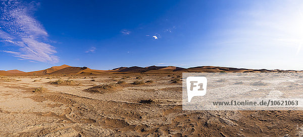 Namibia  Sossusvlei  Region Hardap  Namib-Naukluft Nationalpark  Namibwüste