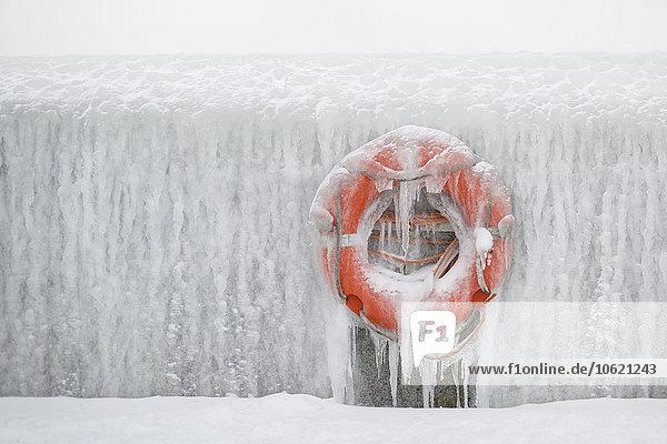 Deutschland  Sassnitz  Rettungsring auf Eiswand im Winter