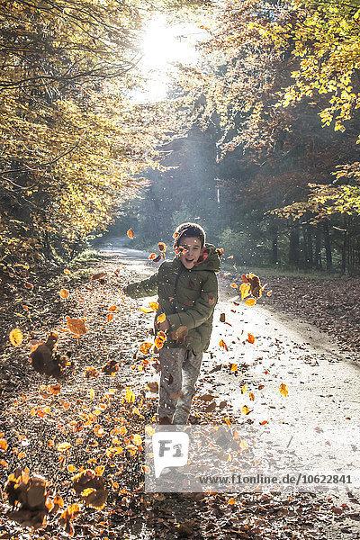 Junge spielt mit Blättern im Herbstwald