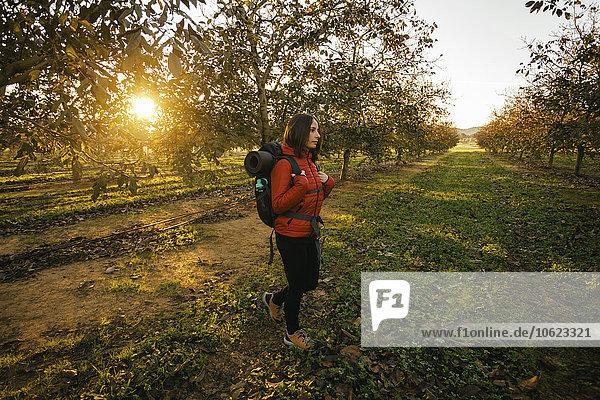 Spain,  Catalunya,  Girona,  woman hiking on field at sunrise