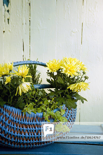 Korb mit gelber Chrysantheme