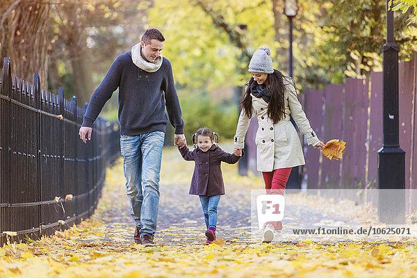 Familienwandern Hand in Hand im herbstlichen Park