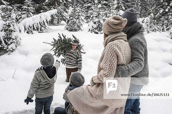 Österreich,  Altenmarkt-Zauchensee,  Mann mit Weihnachtsbaum und Familie zusammen im Winterwald