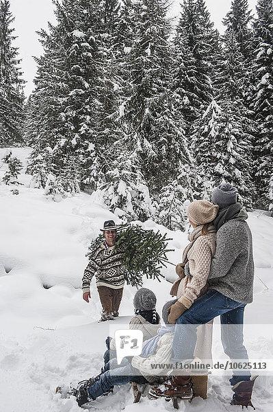 Österreich  Altenmarkt-Zauchensee  Mann mit Weihnachtsbaum und Familie zusammen im Winterwald