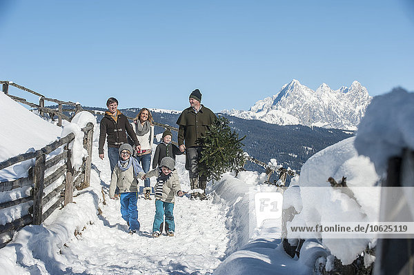 Österreich  Altenmarkt-Zauchensee  Mann mit Familie trägt Weihnachtsbaum in Winterlandschaft