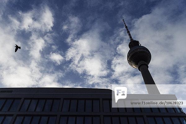 Deutschland  Berlin  Blick auf den Fernsehturm von unten Deutschland, Berlin, Blick auf den Fernsehturm von unten