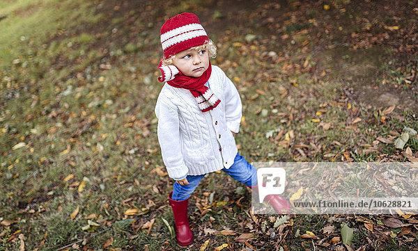 Portrait of blond little boy fashionable knit wear in autumn
