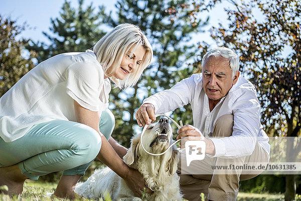 Älteres Paar mit Hund auf einer Wiese