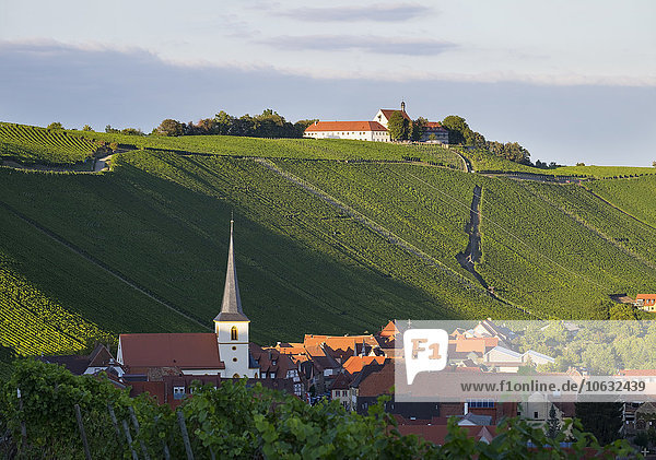 Deutschland  Unterfranken  Escherndorf und Vogelsburg umgeben von Weinbergen